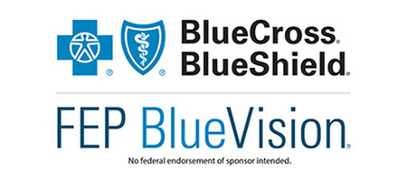 florida blue vision, blue cross blue shield logo